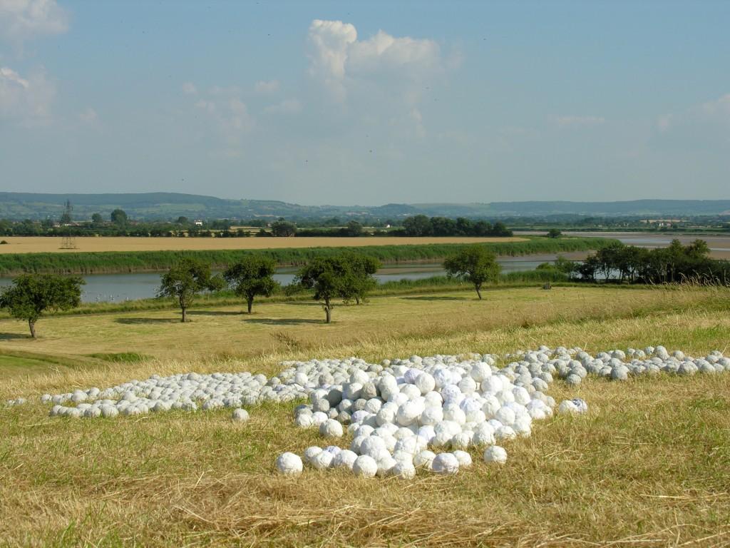 Severnside Snowballs